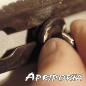 apriporta_scritta